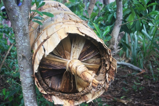 Traditional Ugandan beehive